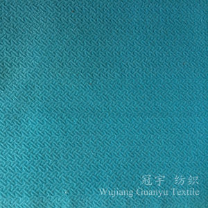 100% Polyester Home Textile Velour Fabric Compound with Embossing Treatment pictures & photos
