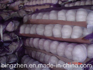 5.0cm and up Small Packing Purple Garlic in 2017 pictures & photos