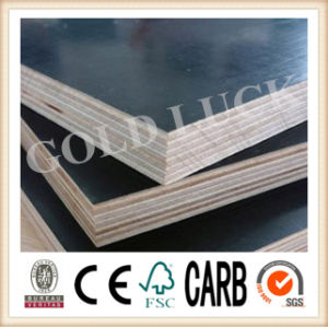 Bamboo Chinese Film Faced Plywood pictures & photos