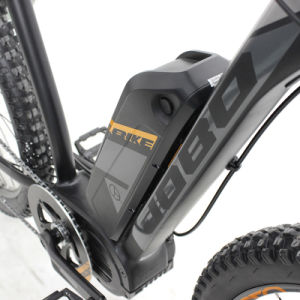Electric Mountain Bike with Double Suspenison and MID Motor, Jb-Tdc28L pictures & photos