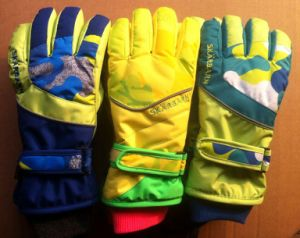 Sports Gloves, Ski Gloves, Warm Gloves (JSG-15019) pictures & photos