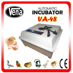 Best Selling Mini Automatic Portable Incubator Va-48 for Sale pictures & photos