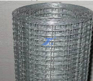 Welded Mesh Roll for Construction (TS-J40) pictures & photos