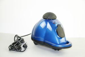 Disinfect Kid′s Toys Steam Cleaner pictures & photos