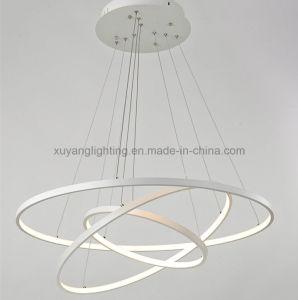 Modern Art Chandelier for Projects, Hot Sales LED Pendant Light for Residental