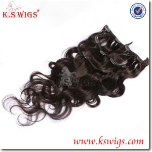 Wholesale Brazilian Virgin Clip in Human Hair Extension pictures & photos