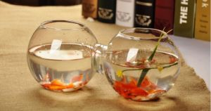 Creative Siamese Glass Fishbowl