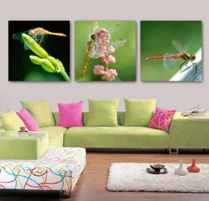 3 Panel Wall Art Oil Painting Dragonfly Painting Home Decoration Canvas Prints Pictures for Living Room Mc-260 pictures & photos