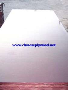 Construction Plywood (HT-FF-025)