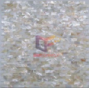 Natural Color High Quality Shell Mosaic Tile (CFP118) pictures & photos