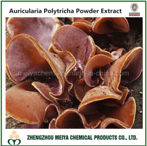 Auricularia Polytricha Fruiting Body Powder Extract with Polysaccharides pictures & photos