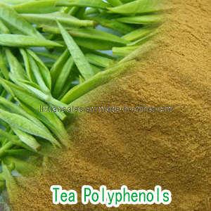 Green Tee Extract Powder Tea Polyphenols EGCG