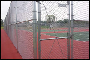 Galvanized Chain Link Fence S0145 pictures & photos