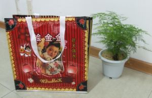 PP Woven Bag, Bedding Packing Bag pictures & photos