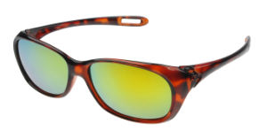 Cycling Glasses with Good Quality (XQ219)