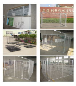 Hot Galvanized Chain Link Steel Dog Kennel pictures & photos
