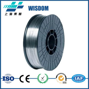 Wisdom Fecrbsi Wire Used for Thermal Spray Coating pictures & photos