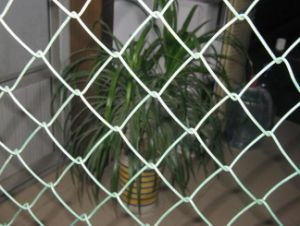 China Hot Sale Decorative Chain Link Fence pictures & photos