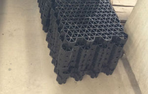 Plastic Drainage Plastic Paver Grass Grid/Grass Grid Pavers/Professional Grass Grid Mould Supplier pictures & photos