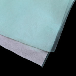 2 Ply Layer and PP Spunbond Non Woven Fabric Material pictures & photos