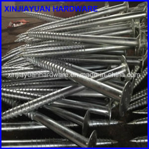Factory Direct Galvanzied Ground Screw with Flange (76*1800mm) pictures & photos