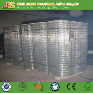 Galvanized Welded Type Welded Wire Mesh Roll pictures & photos
