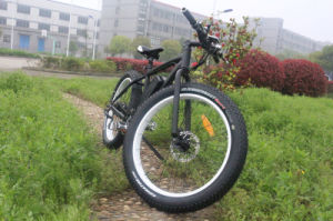 Best Selling 250W Electric Bicycle Buy Online with Ce Approved pictures & photos