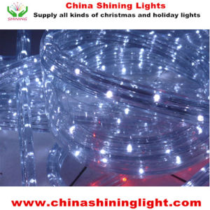 Christmas Holiday Decoration LED Lights pictures & photos