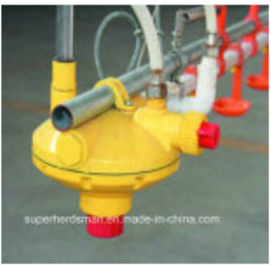Automatic Poultry Feeders and Drinkers for Chicken Shed pictures & photos