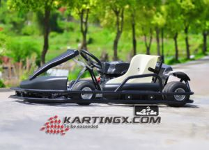 New Products Competitive Karting for Adult Playground Kart Racing pictures & photos