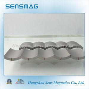 Customized Rare Earth SmCo5 Sm2co17 Magnet for Motor and Generator pictures & photos
