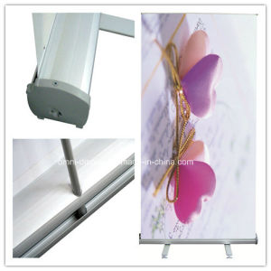 Display Single Side Roll up Banner (DW-R-S-9 85CM) pictures & photos