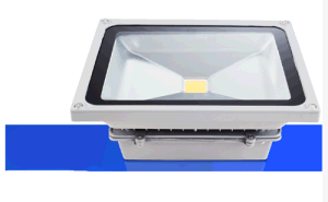 LED Waterproof Omni Advertising Light Projection Lamp Floodlight (FL-001) pictures & photos