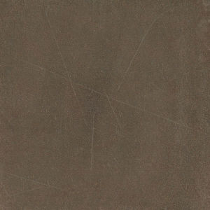 Buiding Ceramic Matt Rustic Tile for Floor 600X600 (RLJ6006)