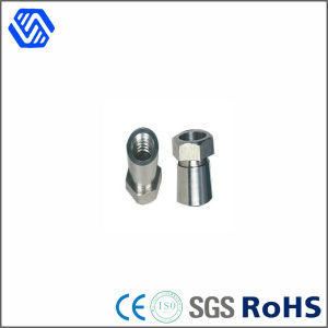High Carbon Steel Bolt Nut Custom Made Guard Against Theft Nut pictures & photos