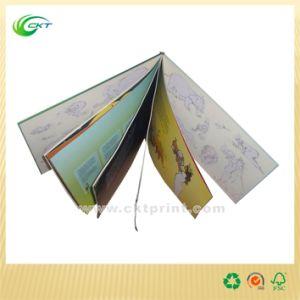 Custom Catalog/Brochure/Booklet Printing for Snack (CKT-BK- 315) pictures & photos