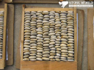 Natural White Pebble on Mesh for Paving pictures & photos