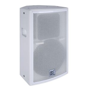 Passive PA Speaker \Disco Sound System \15 Inch Loud Speaker pictures & photos