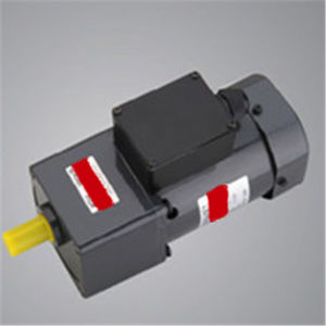 Speed Adjustable 6W Micro AC Motor pictures & photos