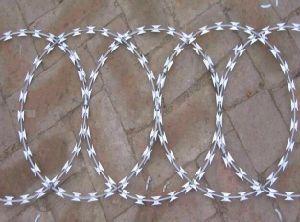 Galvanized Concertina Razor Barbed Wire pictures & photos