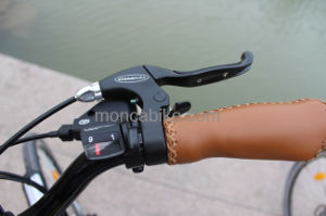 Adult Foot Scooter Kick Scooter Electric Motorcycle City Bike E Bicycle Hi-Ten Steel Frame pictures & photos