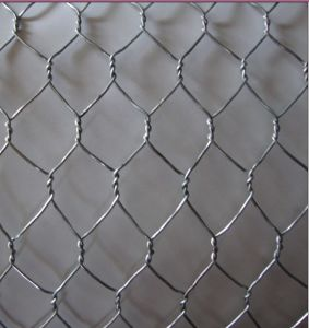 Galvanized Chicken Wire Mesh/Hexagonal Wire Netting Yaqi pictures & photos