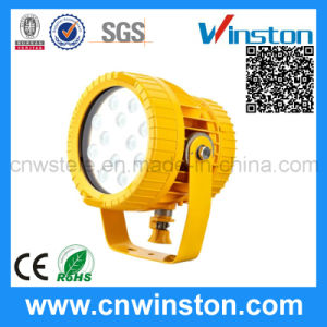Projection Anti Explosion Proof Spot Light with CE pictures & photos
