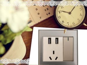 Factory Price of Wall Socket, Electrical Socket, Universal USB Chargert with 3 Port pictures & photos