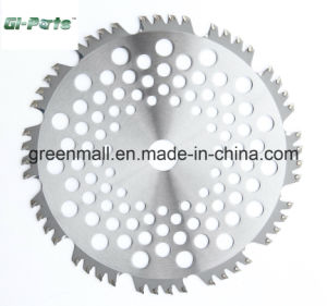 Tct Blade for Brush Cutter (GP050.01.011) pictures & photos