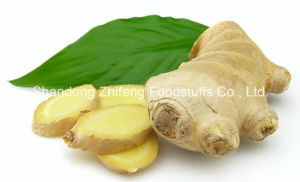 2016 New Crop Ginger with A Grade Quality pictures & photos