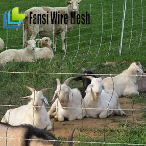 Galvanized Field Fence Wire, Goat Fence, Cattle Fence pictures & photos