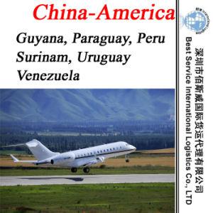 Air Freight Forwarder Agent Guyana, Paraguay, Peru, Surinam, Uruguay, Venezuela pictures & photos