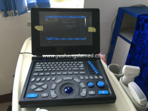 Ysd4200-Vet Ce ISO Medical Equipment Diagnostic Veterinary Ultrasound Scanner pictures & photos