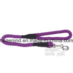 Big Purple Dog Leash, Pet Product pictures & photos